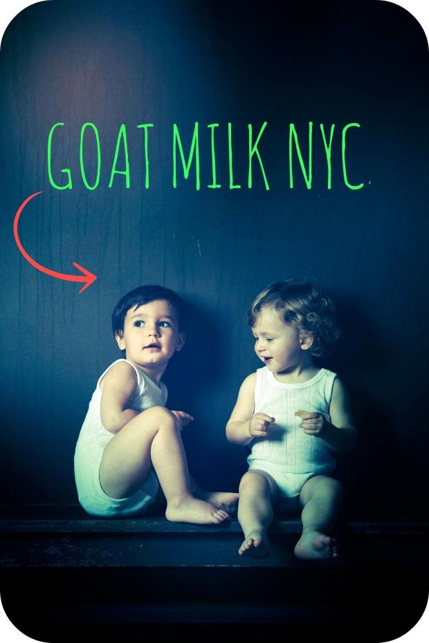 goat milk nyc ok